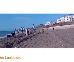 Playa de Piedra Paloma - Málaga - Imagen 2