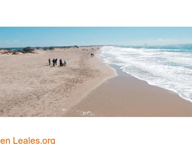 Playa Camposoto - Cádiz - 1
