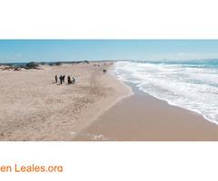Playa Camposoto - Cádiz - Imagen 1
