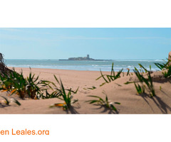 Playa Camposoto - Cádiz - Imagen 2