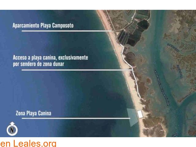 Playa Camposoto - Cádiz - 4
