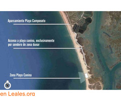 Playa Camposoto - Cádiz - Imagen 4