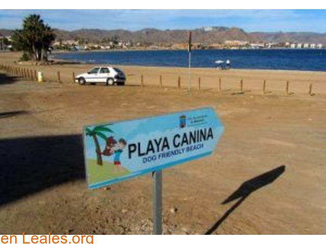 Playa El Gachero - Murcia - 3