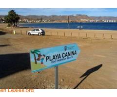 Playa El Gachero - Murcia - Imagen 3