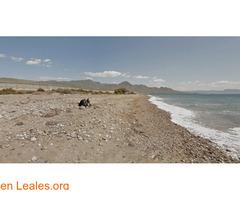 Playa de Las Cobaticas - Murcia - Imagen 1