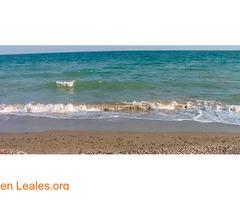 Playa de Las Cobaticas - Murcia - Imagen 2