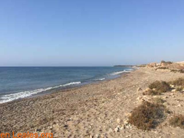 Playa de Las Cobaticas - Murcia - 4