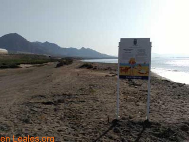Playa de Las Cobaticas - Murcia - 5