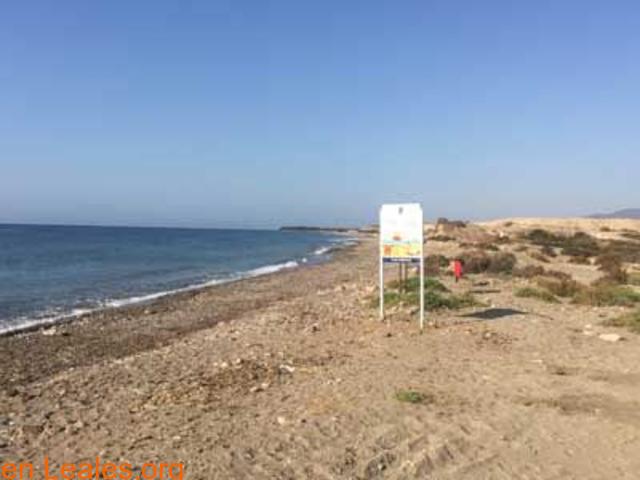 Playa de Las Cobaticas - Murcia - 6