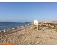 Playa de Las Cobaticas - Murcia - Imagen 6