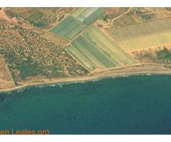 Playa de Las Cobaticas - Murcia - Imagen 7