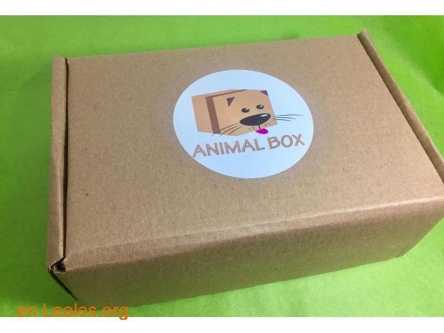 CAJA ANIMAL BOX PARA TU MASCOTA - 1