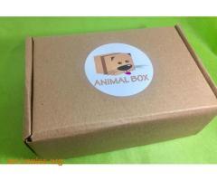 CAJA ANIMAL BOX PARA TU MASCOTA - Imagen 1