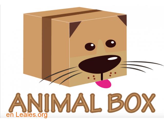 CAJA ANIMAL BOX PARA TU MASCOTA - 2