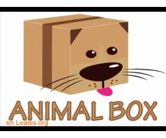 CAJA ANIMAL BOX PARA TU MASCOTA - Imagen 2