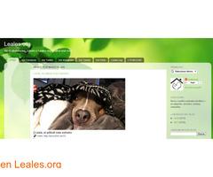 Blogs de Animales Leales - Imagen 1