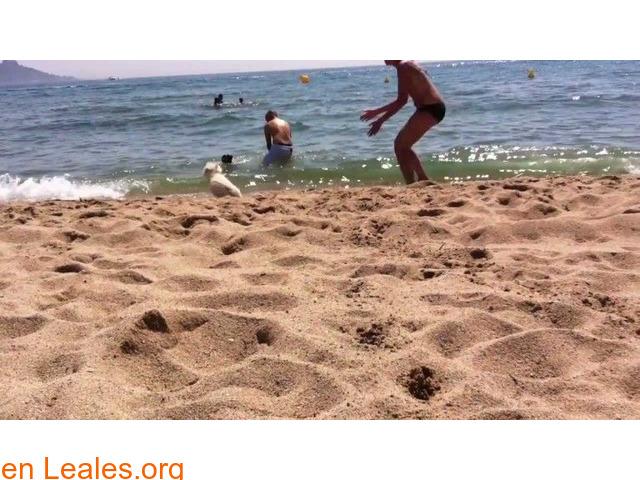 Playa La Rubina - Girona - 2