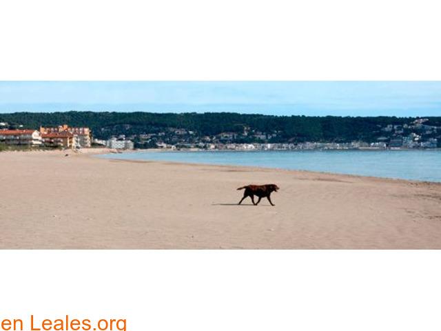 Playa de Els Griells - Girona - 5