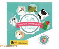 Guía de tenencia responsable de animales - Imagen 1