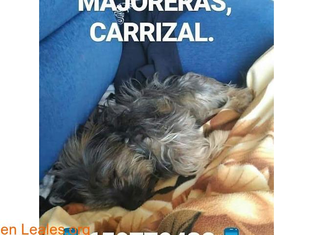 Gran Canaria - 4