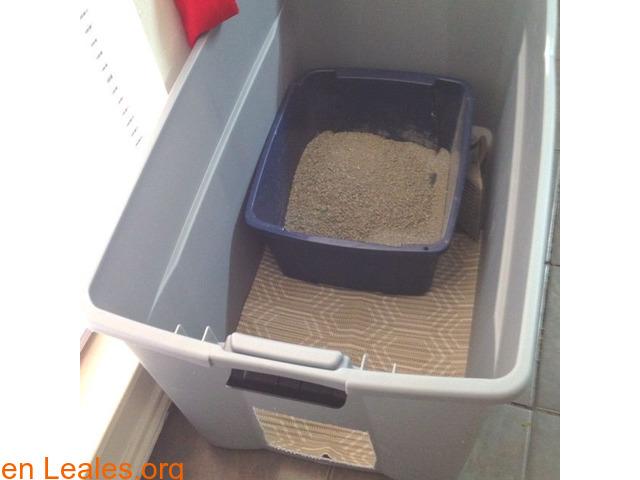 Areneros caseros, ocultos o limpiables - 5