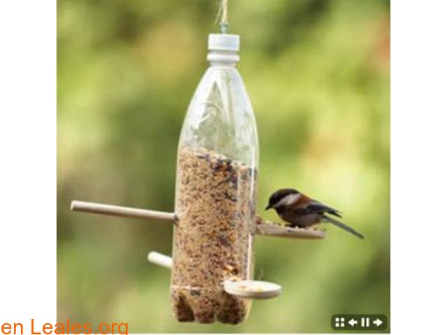 Comedero ecológico para pájaros - 1