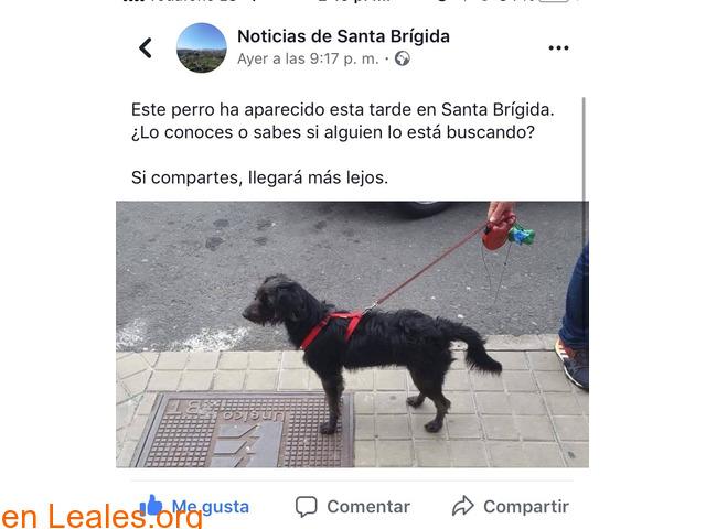 ATENCIÓN ROBADO POR QUIEN LO ENCUENTRA!! - 1