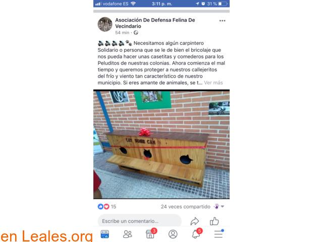NECESITA CARPINTERO SOLIDARIO Y MADERA. - 2