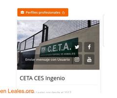 GATITA PERDIDA EN INGENIO. - Imagen 4