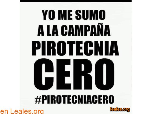 Campaña Pirotecnia Cero, o silenciosa... - 1