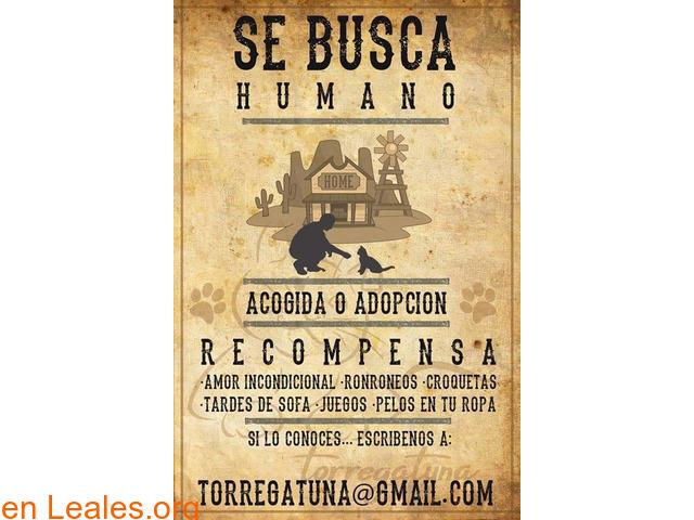 SE BUSCA. SE OFRECE RECOMPENSA - 2