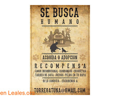SE BUSCA. SE OFRECE RECOMPENSA - Imagen 2
